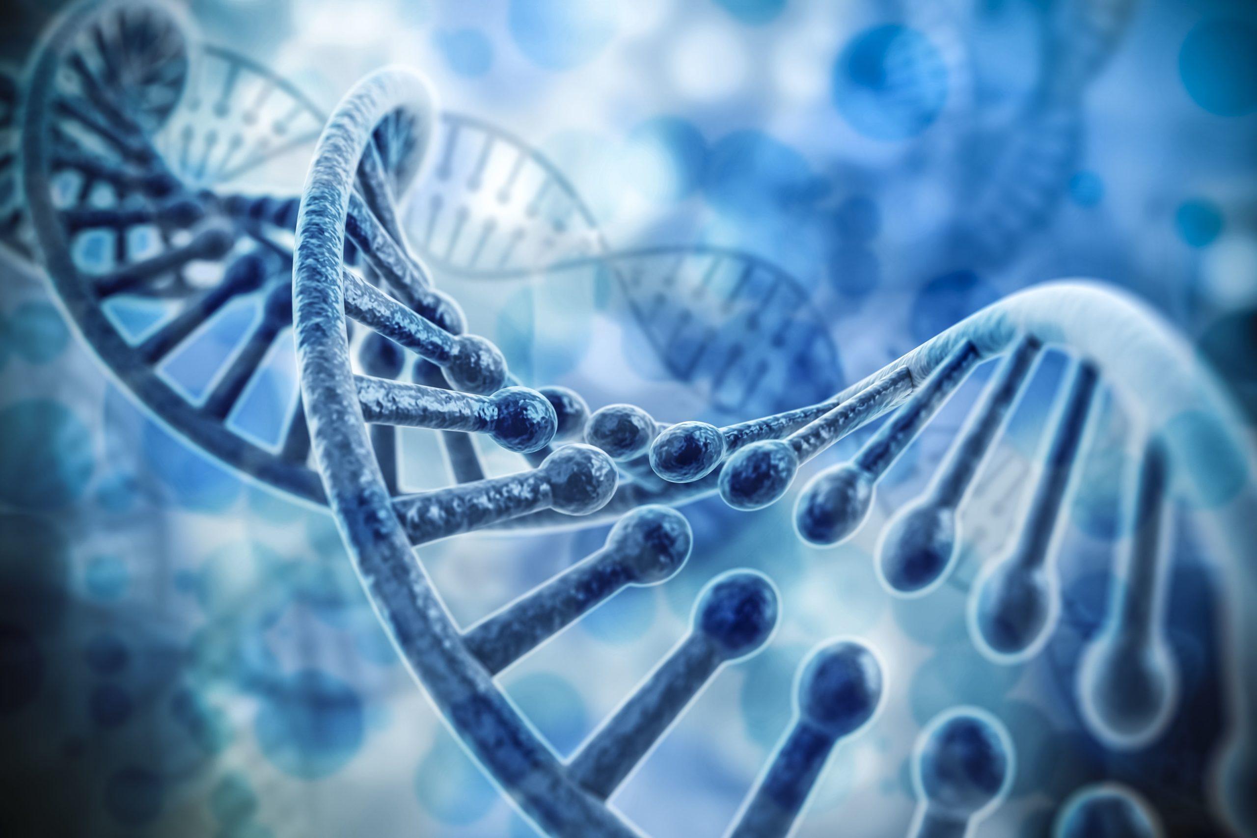 Image d'une échelle ADN